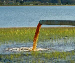 незаконное загрязнение охранных зон водопровода