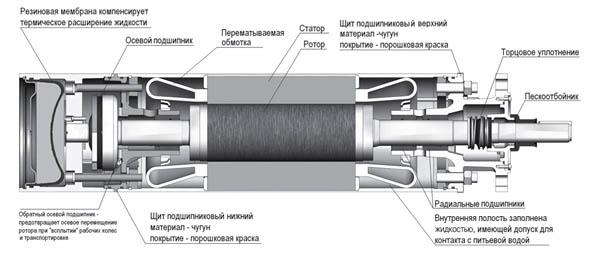 Внутреннее устройство насоса - мотор